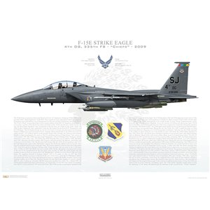 F-15E Strike Eagle 4th Operations Group, 335th Fighter Squadron, SJ/88-1695, Seymour Johnson AFB, NC - 2009 Squadron Lithograph