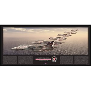 "35"" x 16"" SPECIAL EDITION - VF-24 Fighting Renegades Lineage - FJ-3 Fury, F-8A, F-8C, F-8J Crusader, F-14A Tomcat - Squadron Lithograph Size: Standard - 35 x 16"" / 890 x 400mm"