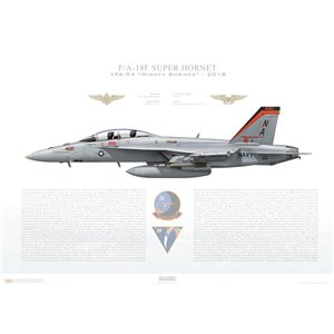 F/A-18F Super Hornet VFA-94 Mighty Shrikes, NA400 / 165911. CVW-17, USS Theodore Roosevelt CVN-71, 2018 Squadron Lithograph
