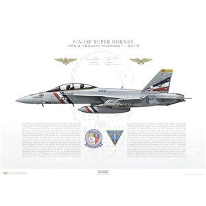 F/A-18F Super Hornet VFA-2 Bounty Hunters, NE100 / 166804. CVW-2, USS Carl Vinson CVN-70, 2019 - Squadron Lithograph