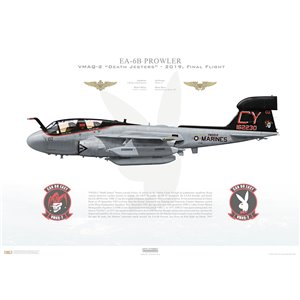 EA-6B Prowler VMAQ-2 Death Jesters, CY02 / 162230. MAG-14, MCAS Cherry Point, NC - 2019, Retirement scheme Squadron Lithograph