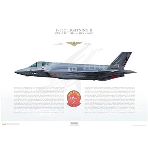 F-35C Lightning II VFA-101 Grim Reapers, NJ101, 168733 -Eglin AFB, FL, - Squadron Lithograph