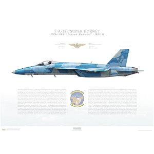 F/A-18E Super Hornet VFA-122 Flying Eagles, NJ101 / 165538. Fleet Replacement Squadron - 2010, Squadron Lithograph