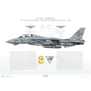 F-14A+ Tomcat VF-103 Sluggers, AA210 / 161422. CVW-17, USS Saratoga CV-60 - Operation Desert Storm, 1991 Squadron Lithograph