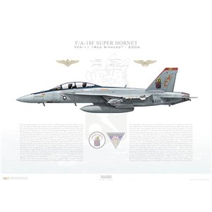 F/A-18F Super Hornet VFA-11 Red Rippers, AC101 / 166634. CVW-3, 2006 Squadron Lithograph