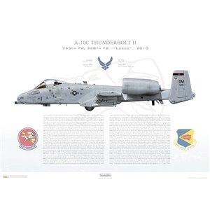 A-10C Thunderbolt II 355th FW, 358th FS Lobos, FS/80-0215.Davis-Monthan AFB, AZ- 2010 Squadron Lithograph