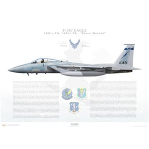 F-15C Eagle 125th Fighter Wing, 159th Fighter Squadron, FL/85-0149 - Florida Air National Guard - Jacksonville ANGB, FL - Squadron Lithograph