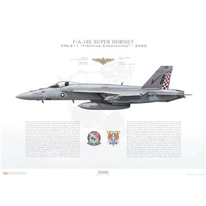 F/A-18E Super Hornet VFA-211 Fighting Checkmates, AB200 / 168923. CVW-1, USS Harry S. Truman CVN-75, 2020 Squadron Lithograph