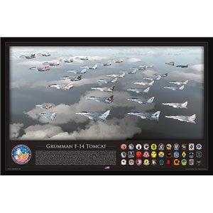 "35"" x 23"" PRINT - Half Century, Baby! F-14 Tomcat History Flight - Aluminum Print Size: 35 x 23"" / 889 x 578mm"