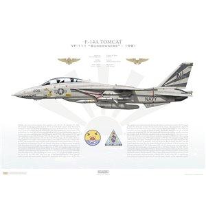 F-14A Tomcat VF-111 Sundowners, NL206 / 160668. CVW-15, USS Kitty Hawk CV-63 - 1981 Squadron Lithograph
