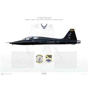 "T-38A Talon 325th OG, 2nd FTS ""American Beagles"", TY/68-8186, Tyndall AFB, FL - Squadron Lithograph"