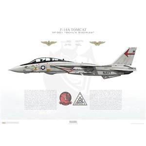 F-14A Tomcat VF-301 Devil's Disciples, ND101 / 158990. CVWR-30, NAS Miramar, CA - Squadron Lithograph