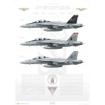 The First Rhino Cruise, VFA-11 Red Rippers, 2006-2007 - Profile Print