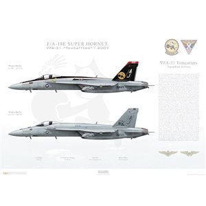 "F/A-18E Super Hornet VFA-31 Tomcatters AJ100 / 166776 and AJ110 / 166784. CVW-8 - 2007   Size: Standard - 24 x 16"" / 594 x 420mm Squadron Lithograph"