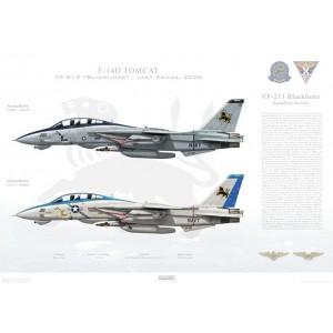 "F-14D Tomcat VF-213 Blacklions, AJ200 / 164347 and AJ213 / 164602. CVW-8, USS Theodore Roosevelt CVN-71 - Last Cruise 2006  Size: Standard - 24 x 16"" / 594 x 420mm Squadron Lithograph"