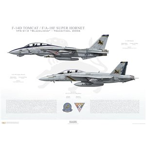 "VF-213 to VFA-213 Blacklions Transition, 2006 / F-14D Tomcat - F/A-18F Super Hornet   Size: Standard - 24 x 16"" / 594 x 420mm Squadron Lithograph"