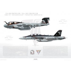 "VAQ-141 Shadowhawks Transition, 2010 / EA-6B Prowler - EA-18G Growler   Size: Standard - 24 x 16"" / 594 x 420mm Squadron Lithograph"