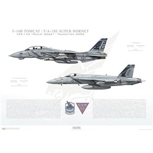 "VF-143 to VFA-143 Pukin' Dogs Transition, 2005 / F-14B Tomcat - F/A-18E Super Hornet   Size: Standard - 24 x 16"" / 594 x 420mm Squadron Lithograph"