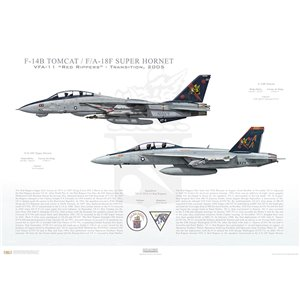 "VF-11 to VFA-11 Red Rippers Transition, 2005 / F-14B Tomcat - F/A-18F Super Hornet   Size: Standard - 24 x 16"" / 594 x 420mm Squadron Lithograph"