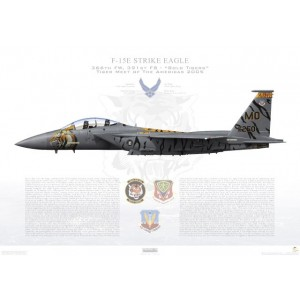 F-15E Strike Eagle 366th Fighter Wing, 391st Fighter Squadron, MO/90-0250 - Tiger Meet of the Americas 2005 - Mountain Home AFB, ID - 2005 Squadron Lithograph