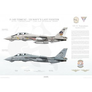 "F-14D Tomcat VF-31 Tomcatters, AJ103 / 164350 and AJ102 / 163904. Last Cat Standing - Tomcat Sunset , 2006  Size: Standard - 24 x 16"" / 594 x 420mm Squadron Lithograph"