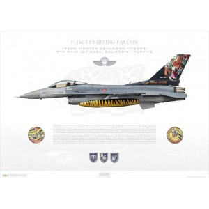 "F-16CJ Fighting Falcon 93-0678, 192nd Fighter Squadron / 192 Filo ""Tigers"", Balikesir AFB - Tiger Meet 2006 - Albacete, Spain Squadron Lithograph"