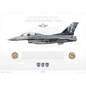 "F-16DJ Fighting Falcon 93-0696, 192nd Fighter Squadron / 192 Filo ""Tigers"", Balikesir AFB - Tiger Meet 2006 - Albacete, Spain Squadron Lithograph"