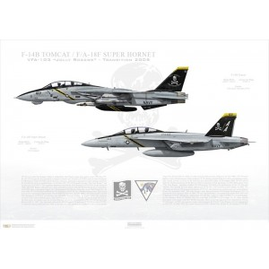 """VF-103 to VFA-103 Jolly Rogers Transition, 2005 / F-14B Tomcat - F/A-18F Super Hornet  Size: Standard - 24 x 16"""" / 594 x 420mm Squadron Lithograph"""