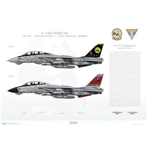 "F-14D Tomcat VF-31 Tomcatters, AJ100 / 164342 and AJ101 / 164603. CVW-8, USS Theodore Roosevelt CVN-71 - Last Cruise, 2006   Size: Standard - 24 x 16"" / 594 x 420mm Squadron Lithograph"