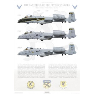 "The Last Hogs of the Flying Yankees, 103rd FW, 118th FS, Connecticut Air National Guard - 2007 LIMITED EDITION: Only 25 individually numbered prints are produced! Size: Standard - 24 x 16"" / 594 x 420mm Squadron Lithograph"