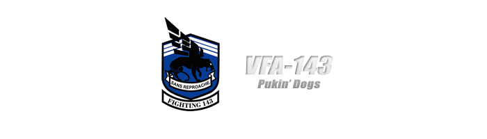 VFA-143 Pukin' Dogs